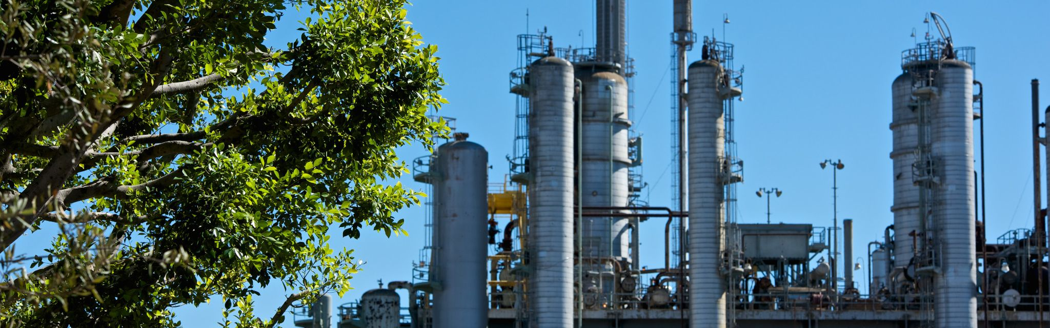 Daytime shot of the Los Angeles Refinery, with tree in foreground